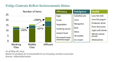 Emerging Market Skeptic - Fridge Contents Reflect Socioeconomic Status